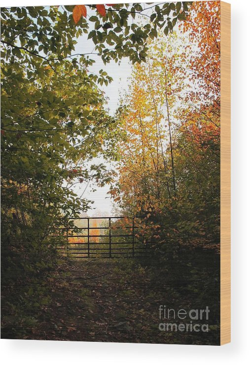 Autumn Wood Print featuring the photograph Gateway by Linda Marcille