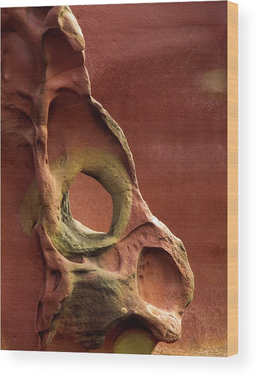 Geology Wood Print featuring the photograph Sinister Forms by By Mediotuerto