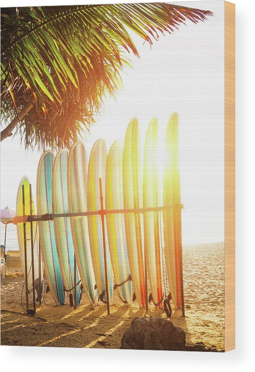 Recreational Pursuit Wood Print featuring the photograph Surfboards At Ocean Beach by Arand