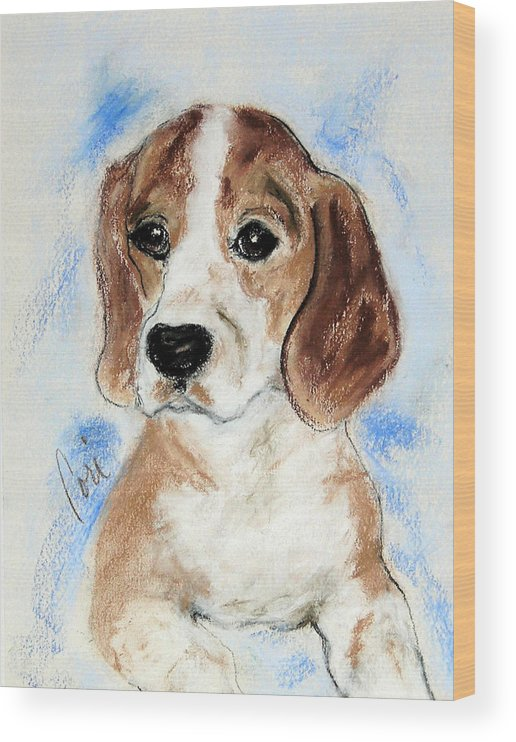 Dog Wood Print featuring the drawing Sweet Innocence by Cori Solomon