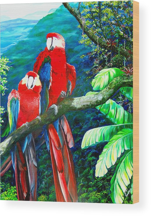 Caribbean Painting Green Wing Macaws Red Mountains Birds Trinidad And Tobago Birds Parrots Macaw Paintings Greeting Card  Wood Print featuring the painting Who Me  by Karin Dawn Kelshall- Best