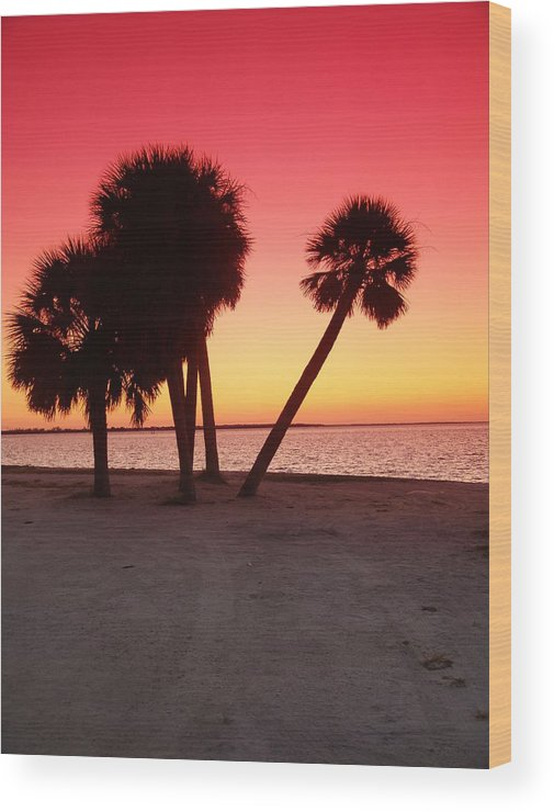 Tropical Wood Print featuring the photograph Florida Gulf Sunset by Florene Welebny