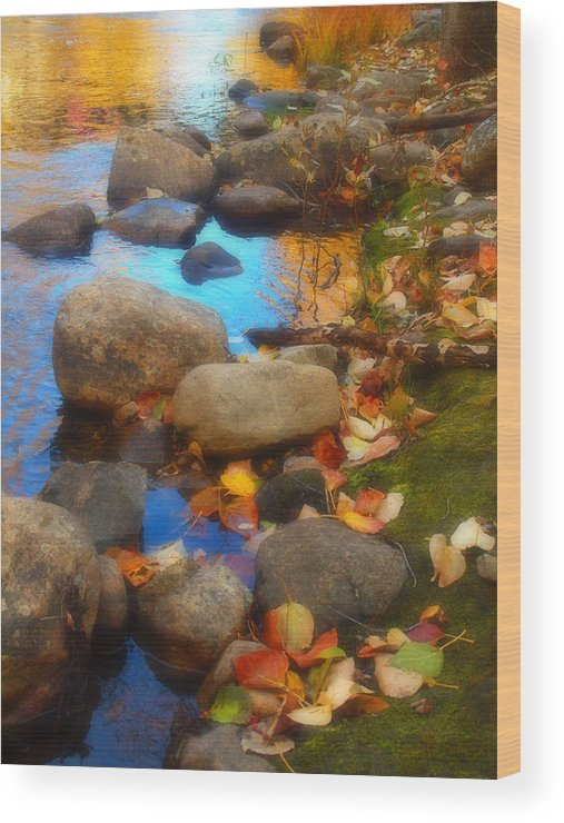Autumn Wood Print featuring the photograph Autumn By The Creek by Tara Turner