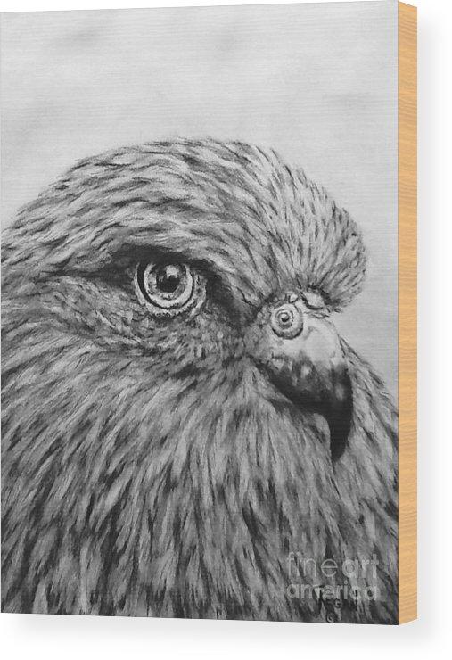 Birds Wood Print featuring the drawing Bird by Regan J Smith