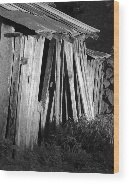 Ansel Adams Wood Print featuring the photograph Blackburn-barn by Curtis J Neeley Jr