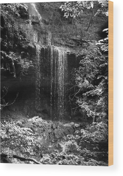 Ansel Adams Wood Print featuring the photograph Crikfall by Curtis J Neeley Jr