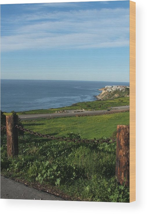 Ocean Wood Print featuring the photograph Enjoying The View by Shari Chavira
