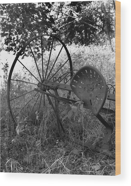 Ansel Adams Wood Print featuring the photograph Hogeye Hayrake by Curtis J Neeley Jr