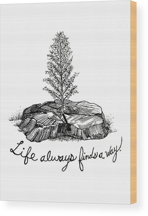 Pen And Ink Illustration Wood Print featuring the drawing LIfe Always Finds A Way by Rick Frausto