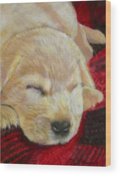 Dog. Dog Portrait Wood Print featuring the painting Mellow Yellow by David Horning