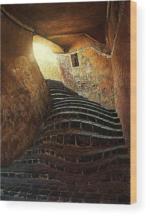 Fine Art Wood Print featuring the photograph The light at the end of the tunel by Lucian Badea