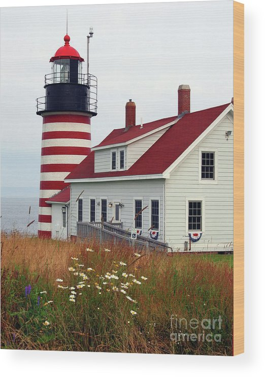Eastport Maine Wood Print featuring the photograph West Quoddy Head Light by Brenda Giasson