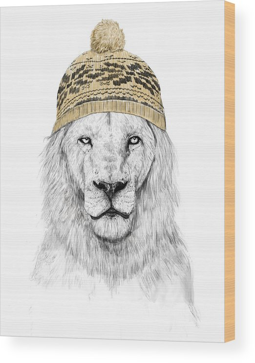 Lion Wood Print featuring the drawing Winter lion by Balazs Solti