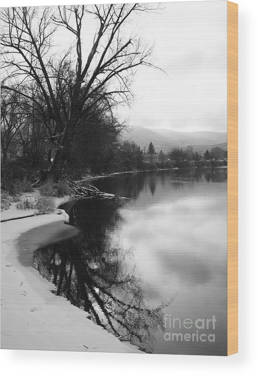 Black And White Wood Print featuring the photograph Winter Tree Reflection - Black and White by Carol Groenen