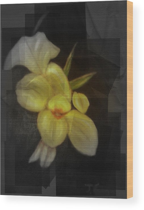 Flowers Wood Print featuring the mixed media Yellow canna lilies by Joseph Ferguson