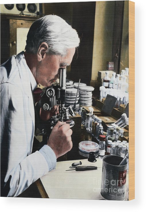 Microscope Wood Print featuring the photograph Alexander Fleming At Microscope by Bettmann
