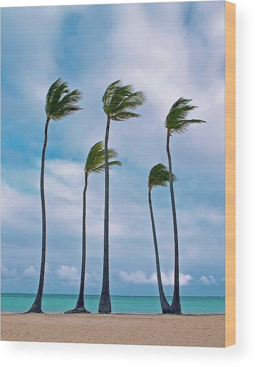 Tranquility Wood Print featuring the photograph Beach And Coconut Trees by Photography By Roger Zayas©