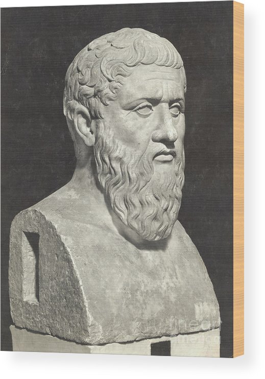 Art Wood Print featuring the photograph Bust Of Grecian Philosopher Plato by Bettmann