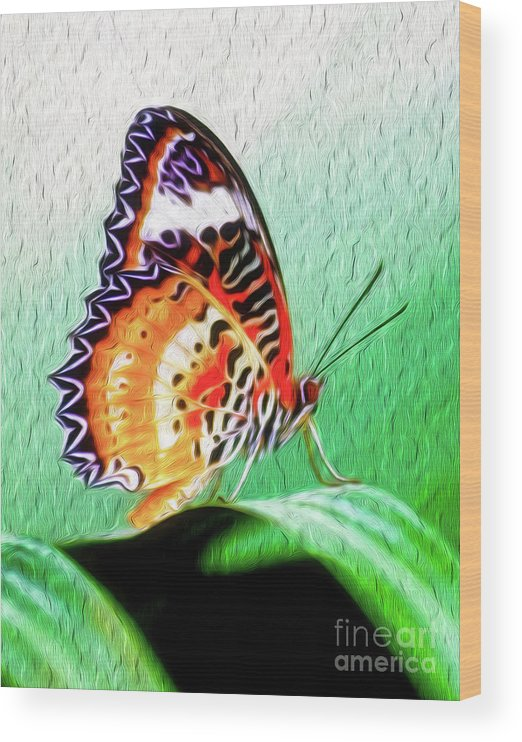 Butterfly Wood Print featuring the digital art Malay Lacewing Butterfly II by Kenneth Montgomery