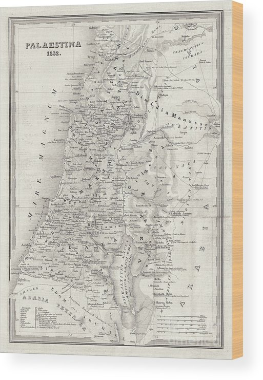 Etching Wood Print featuring the digital art Map Of Palestine, Steel Engraving by Zu 09