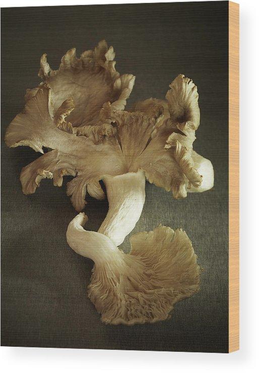 Edible Mushroom Wood Print featuring the photograph Oyster Mushrooms Still Life by Carin Krasner