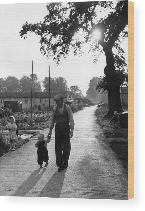 Toddler Wood Print featuring the photograph Walking In Sunshine by Bert Hardy