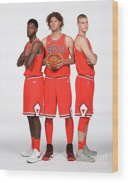 Media Day Wood Print featuring the photograph Lauri Markkanen, Bobby Portis, and Robin Lopez by Randy Belice