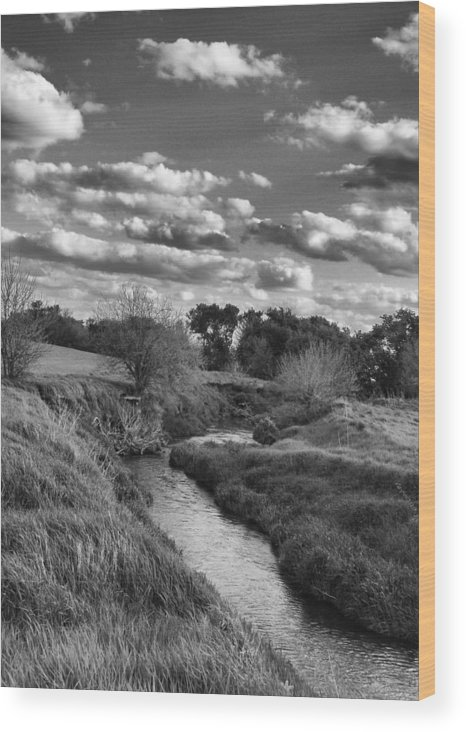 Landscape Wood Print featuring the photograph Serenity by Tom Druin