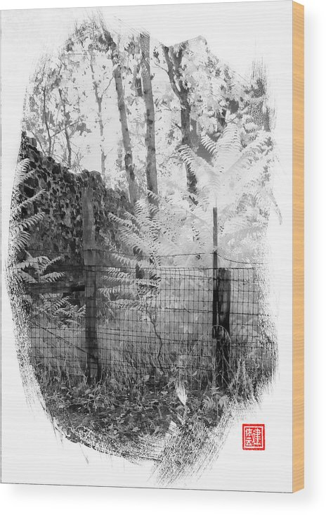Chinese Camp Wood Print featuring the digital art Lone Stone Wall by Ken Evans