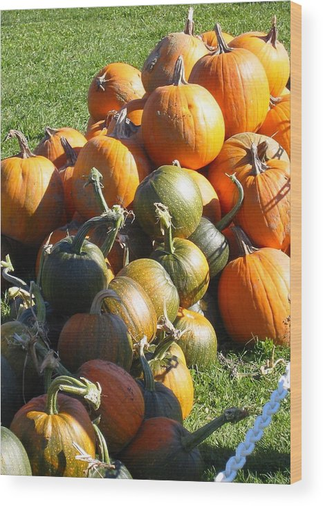 Photo Of Pumpkins Wood Print featuring the photograph More Pumpkins by Sarah Gayle Carter