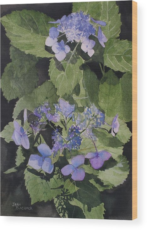 Flowers Wood Print featuring the painting Blue Lace by Jean Blackmer