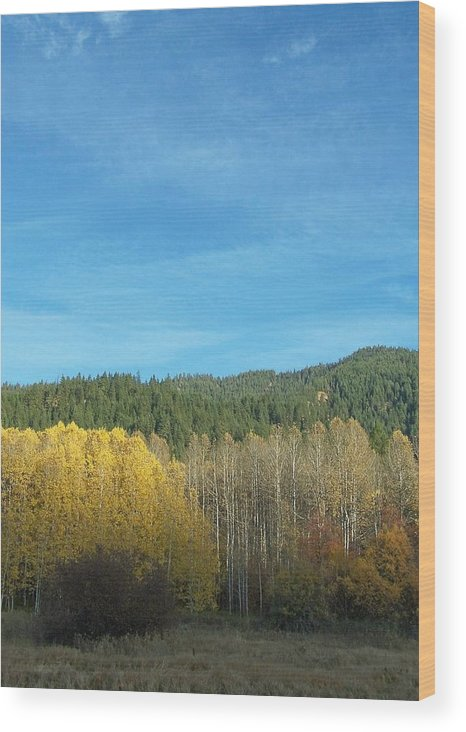 Fall Wood Print featuring the photograph Cascade Fall by Gene Ritchhart