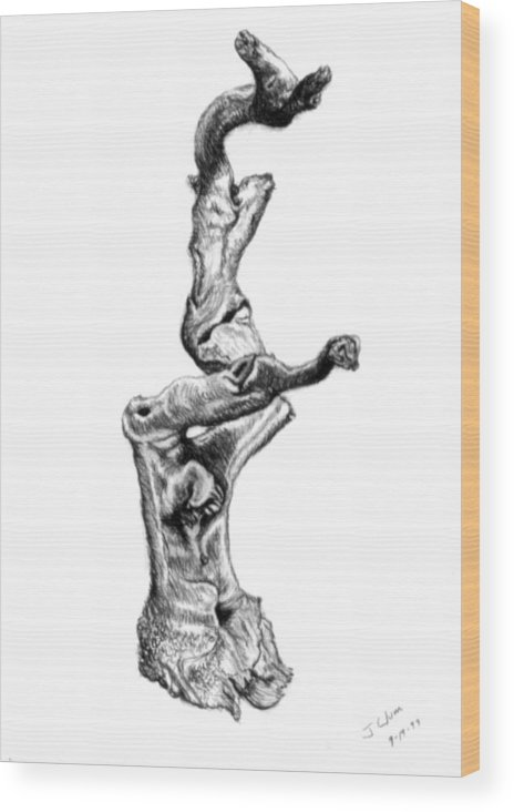 Driftwood Wood Print featuring the drawing Driftwood by John Clum
