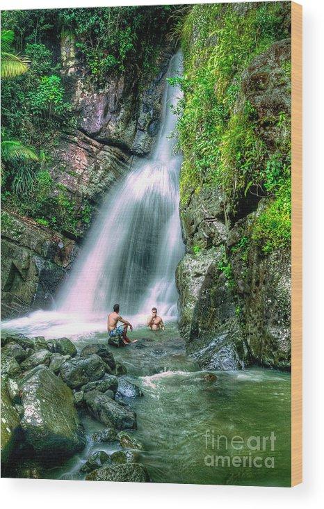 El Yunque Rain Forest Waterfall Wood Print featuring the photograph El Yunque Rain Forest Waterfall by David Zanzinger