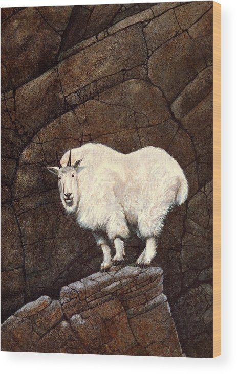 Wildlife Wood Print featuring the painting Mountain Goat by Frank Wilson