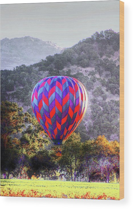 Landscape Wood Print featuring the photograph Napa Valley Morning Balloon by Ray Marcus