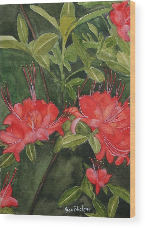 Flowers Wood Print featuring the painting Red Blooms On The Parkway by Jean Blackmer