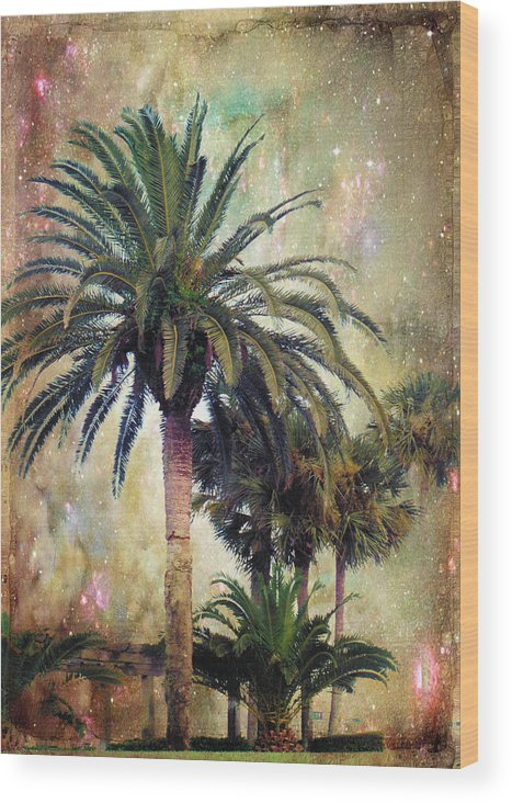 Landscapes Wood Print featuring the photograph Starry Evening In St. Augustine by Jan Amiss Photography