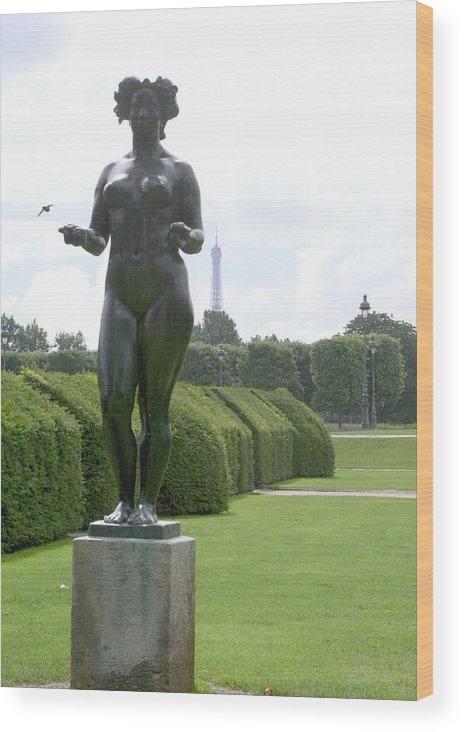 Statue Wood Print featuring the photograph Statues At The Louvre by Greg Sharpe
