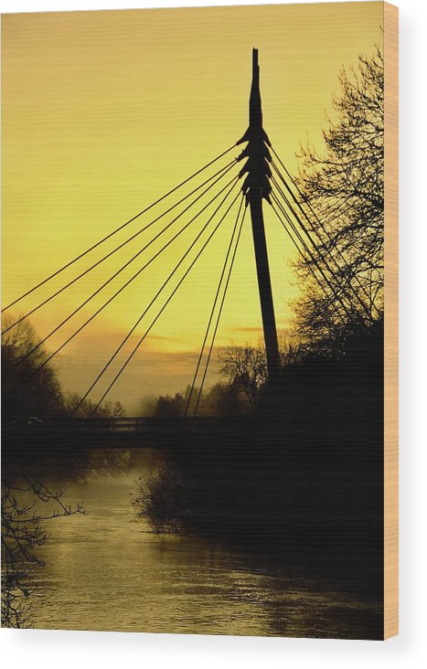 Cable Bridge Wood Print featuring the photograph Sunny Bridge by Phil Child