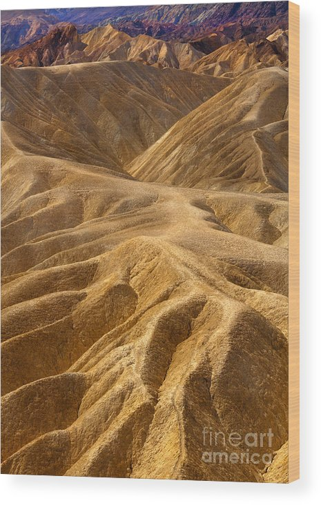 Hills Wood Print featuring the photograph Zabriskie Morning by Mike Dawson
