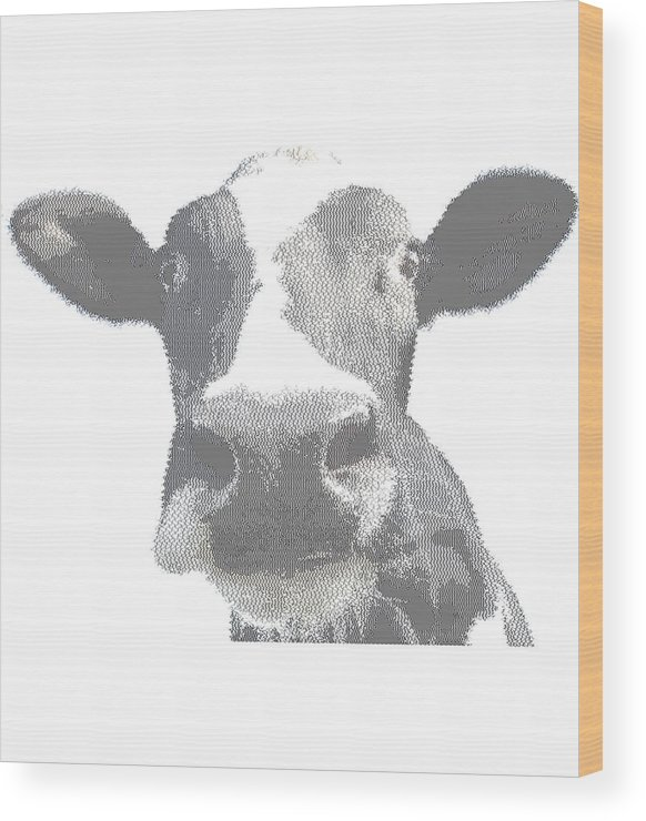 Cow - Cross Hatching Wood Print