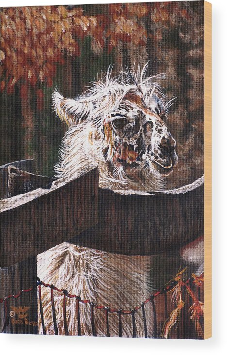 Llama Wood Print featuring the painting Autumn Greeting by Cara Bevan