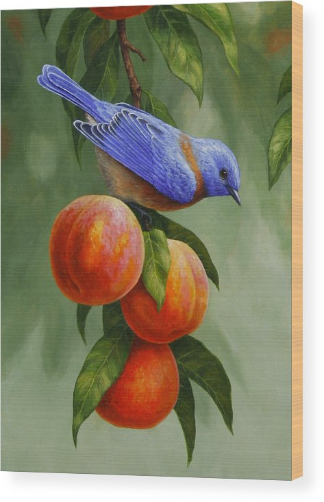 Bird Wood Print featuring the painting Bluebird And Peaches Greeting Card 1 by Crista Forest