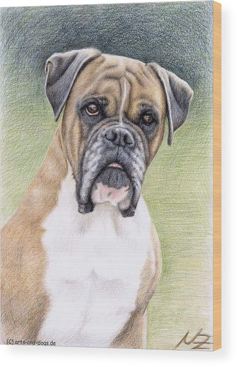 Dog Wood Print featuring the drawing Boxer Portrait by Nicole Zeug
