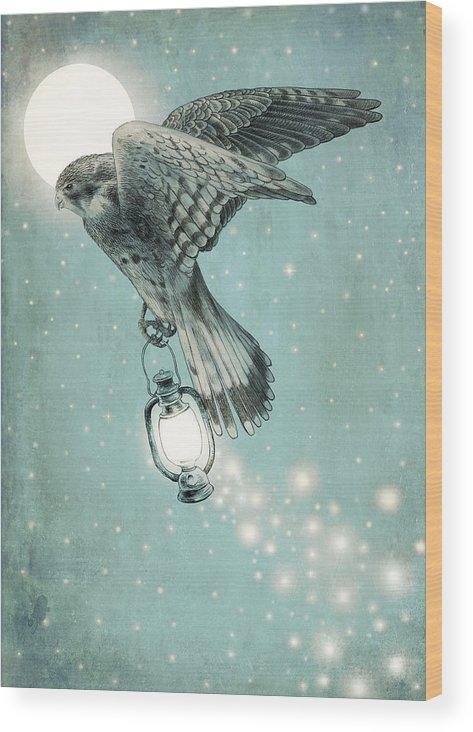 Hawk Wood Print featuring the drawing Nighthawk by Eric Fan
