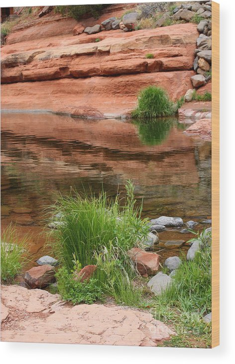 Sedona Wood Print featuring the photograph Still Waters At Slide Rock by Carol Groenen