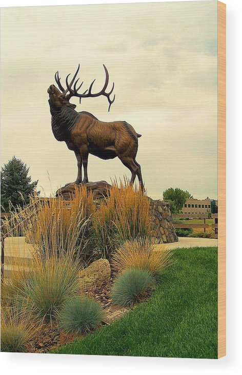 Bronze Statues Wood Print featuring the photograph Wapiti by Richard Stillwell