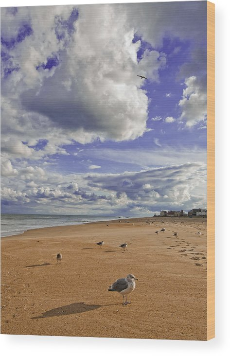 Beach Wood Print featuring the photograph Alone At Last by Jim Moore