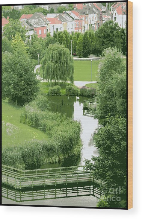 Belgium Wood Print featuring the photograph Summer Park In Belgium by Carol Groenen